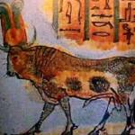 Mediterranean Bull Cults